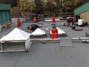 Futura Roof